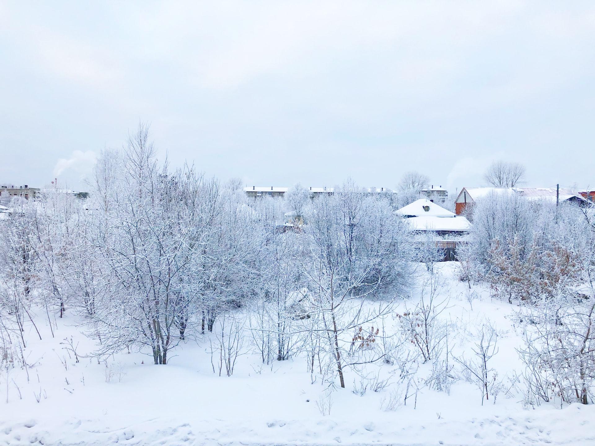 Czy w Polsce możliwy jest śnieg latem?