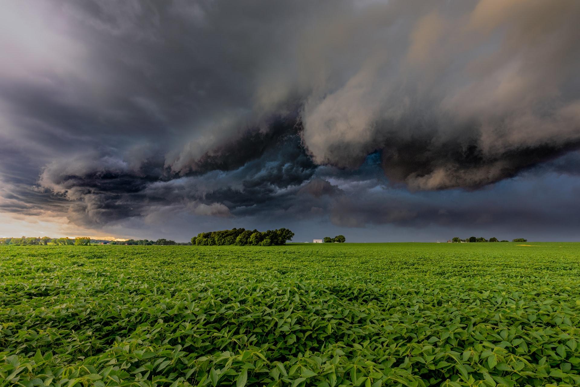 Uwaga! Silne ulewy na południu, wschodzie i centrum kraju. Pojawi się także silny wiatr