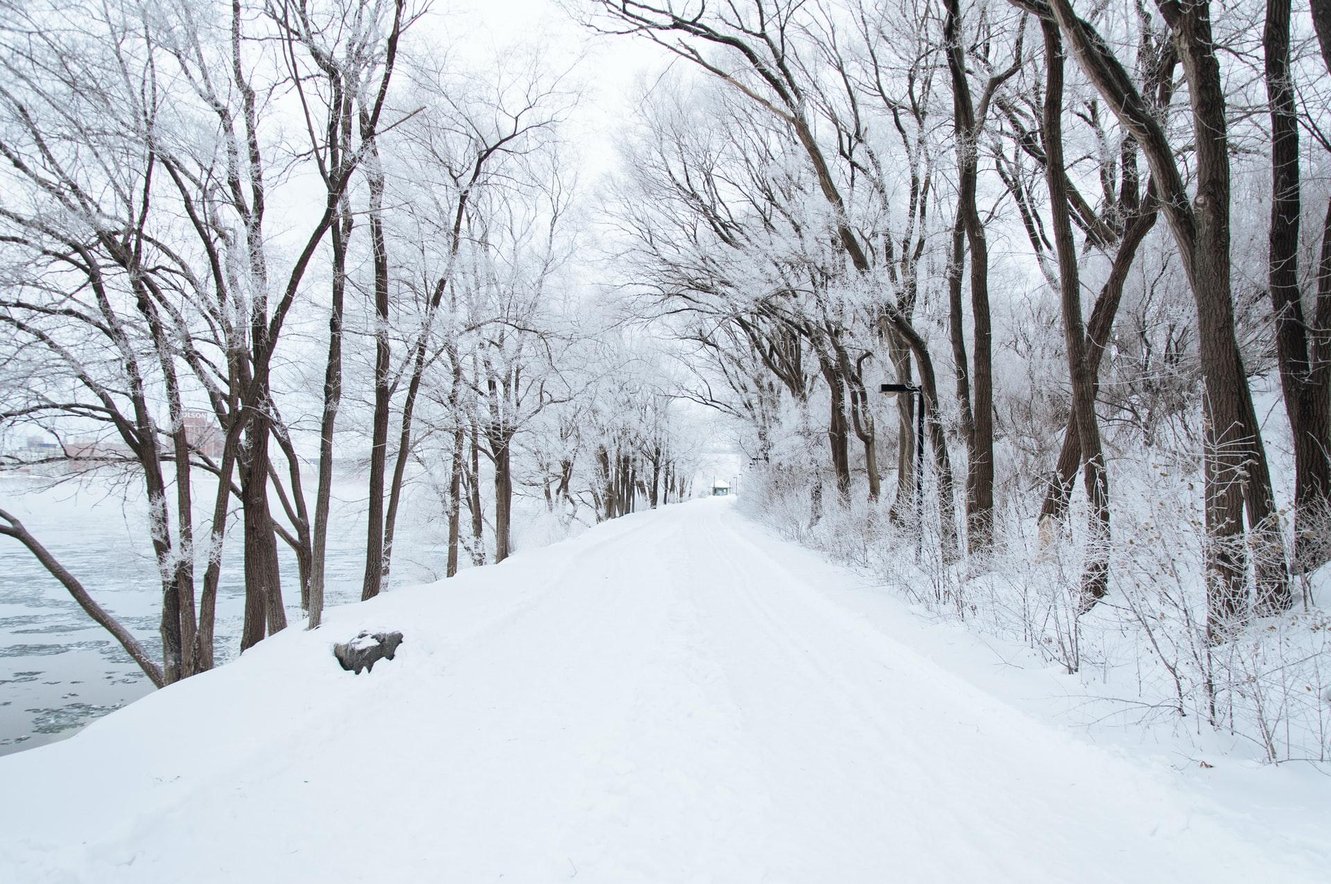 Weekend z opadami śniegu. Gdzie spadnie go najwięcej?