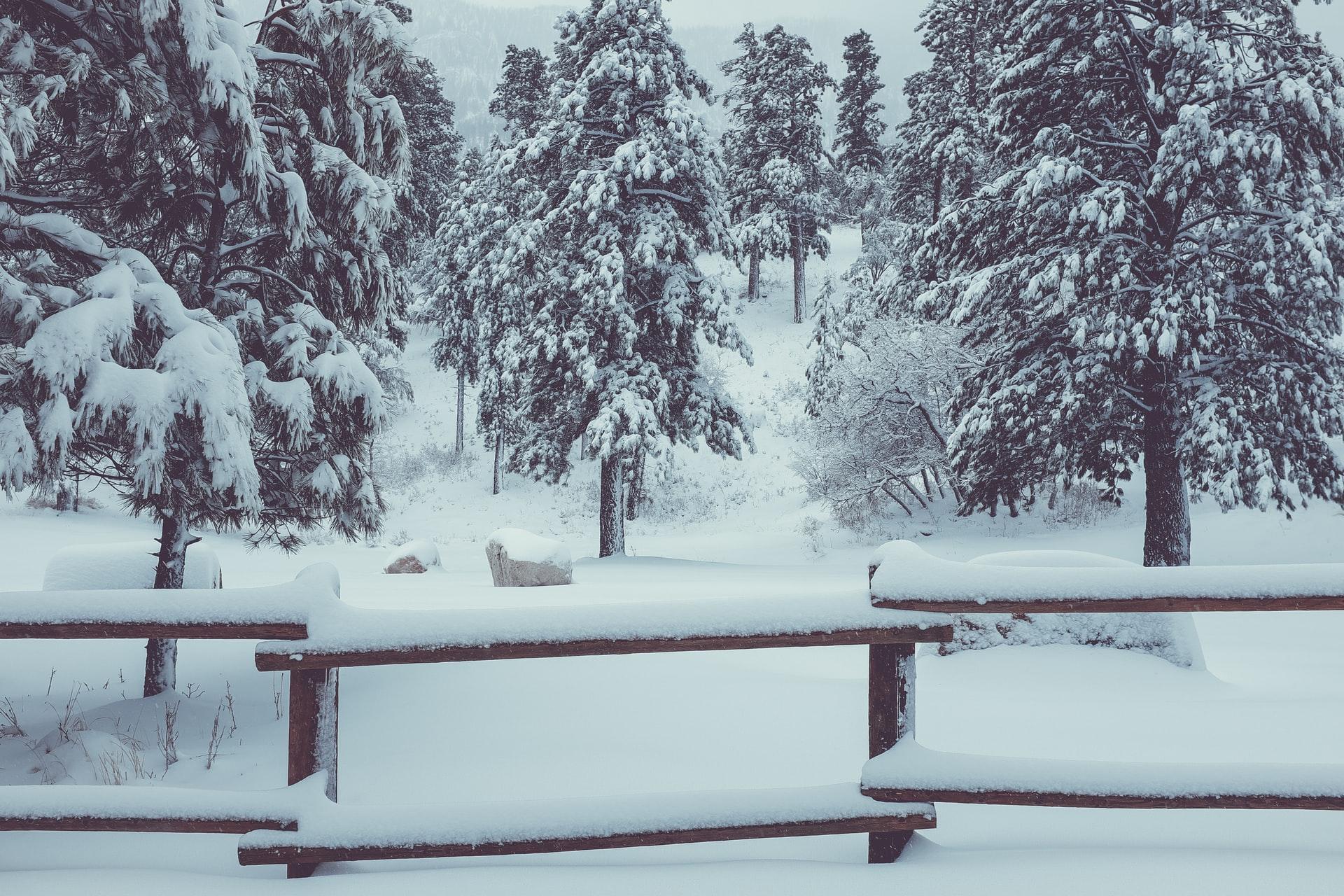 Nadchodzi kolejna śnieżyca. Spadnie do 20 cm śniegu, a mróz nie odpuści